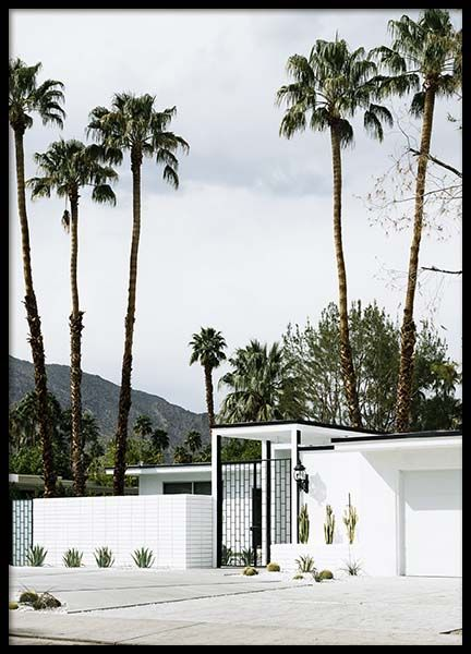 White House Palm Springs Poster in der Gruppe Poster / Naturmotive bei Desenio AB (10221)
