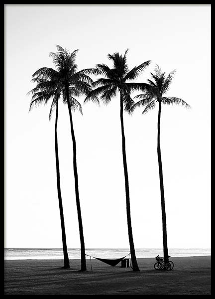 Palm Trees On Beach Poster in de groep Posters / Zwart wit bij Desenio AB (10233)