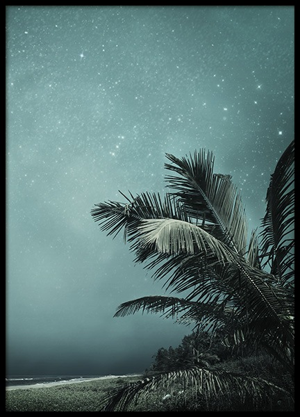 Tropical Night No1 Poster in der Gruppe Poster / Naturmotive bei Desenio AB (10645)