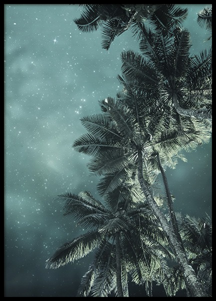 Tropical Night No3 Poster in der Gruppe Poster / Naturmotive bei Desenio AB (10647)