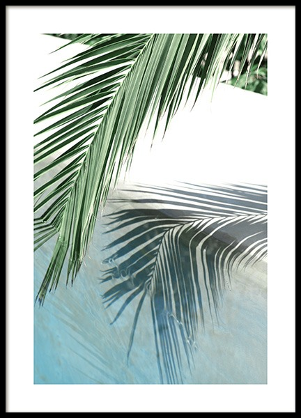 Poolside Palm Reflection Poster in der Gruppe Poster / Fotografien bei Desenio AB (10666)