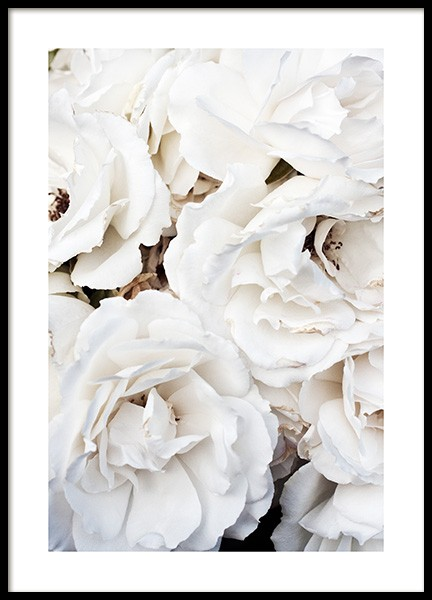 mamamoo-Love Lane huwelijk niet dating OST Lyrics