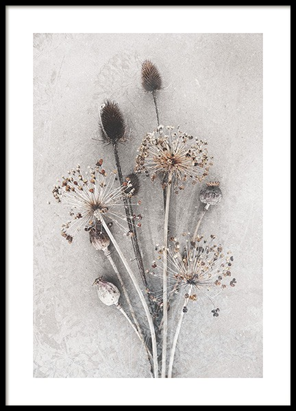 Dried Bunch of Flowers Poster in de groep Posters / Fotokunst bij Desenio AB (12666)
