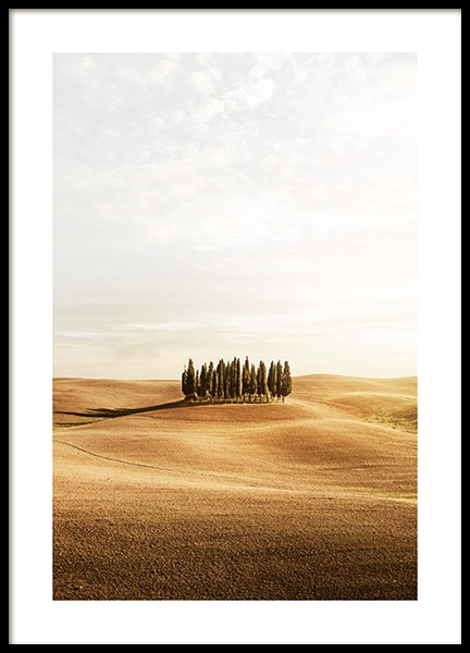 Tuscany Trees Poster in der Gruppe Poster / Naturmotive / Landschaften bei Desenio AB (13393)