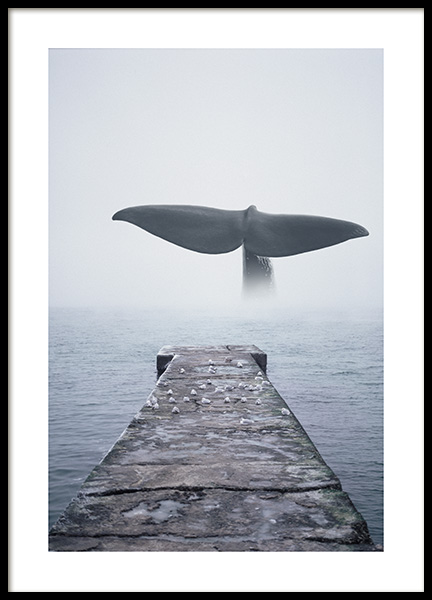 Whale Tail Poster in der Gruppe Poster / Tiere / Meerestiere bei Desenio AB (14168)